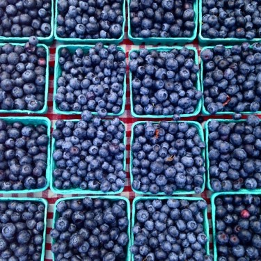 Fresh locally grown blueberries from Sidhu Farms in Puyallup, Washington!